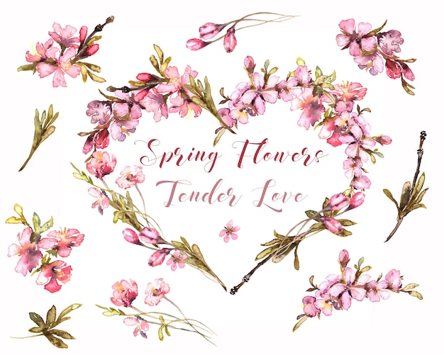 Spring flowers watercolor. tender blush heart. floral heart on transperent background. pink wreath