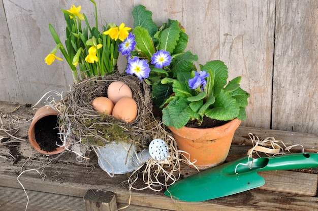 Spring flowers with eggs