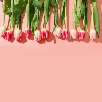 Весенняя рамка из розовых тюльпанов на розовом фоне.