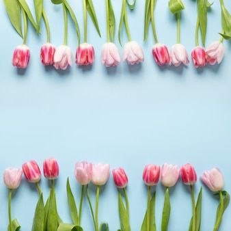 Spring frame of pink tulips on blue. floral pattern.