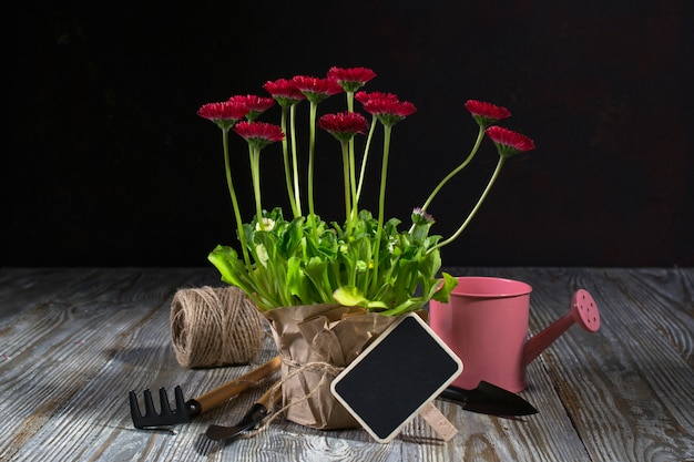 春の庭の作品コンセプト。園芸工具、鉢花、水まき缶、暗い木製のテーブル。