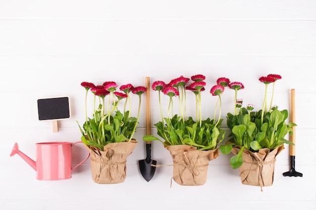 春の庭の作品コンセプト。園芸工具、鉢花、水まき缶白いテーブルの上。トップビュー、フラットレイアウト