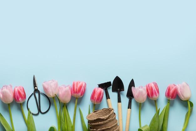 青にピンクのチューリップの春のガーデニングフレーム。花柄。