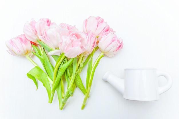 봄 인사말 카드. 신선한 빛 파스텔 핑크 튤립 꽃의 꽃다발 작은 장난감 물을 수 흰색 배경에 꽃병