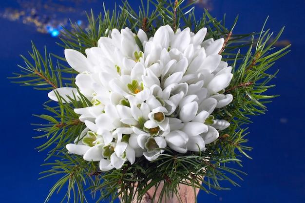 モミの小枝と春の休日のスノードロップの花の花束