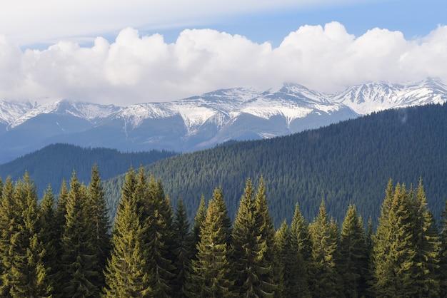 Весна в горах. пейзаж с последним тающим снегом на хребте. солнечный день с кучевыми облаками