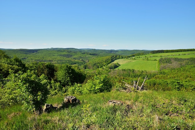 Spring landscape in the czech republic. europe. forest and blue sky.