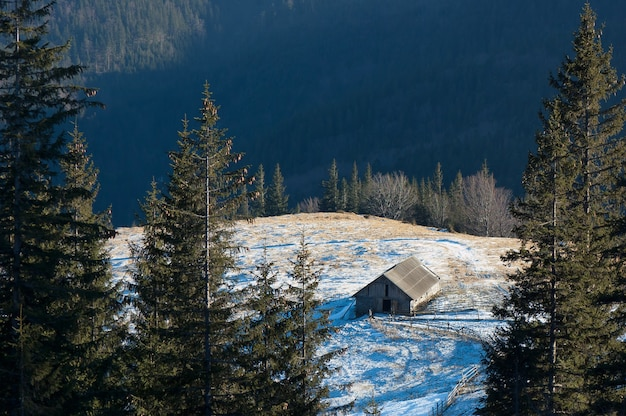 Spring landscape in the forested mountains of the farm and the house of the shepherds. ukraine, the carpathian mountains