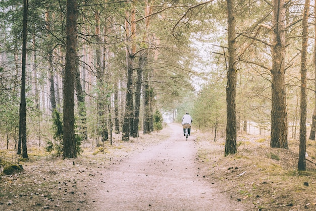 森の小道の春の風景。自転車の人間。
