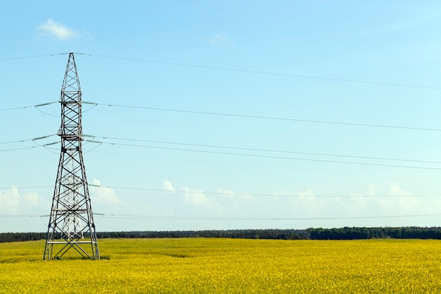 Весенний пейзаж, на котором растет желтый рапс и стоят высоковольтные металлические заборы