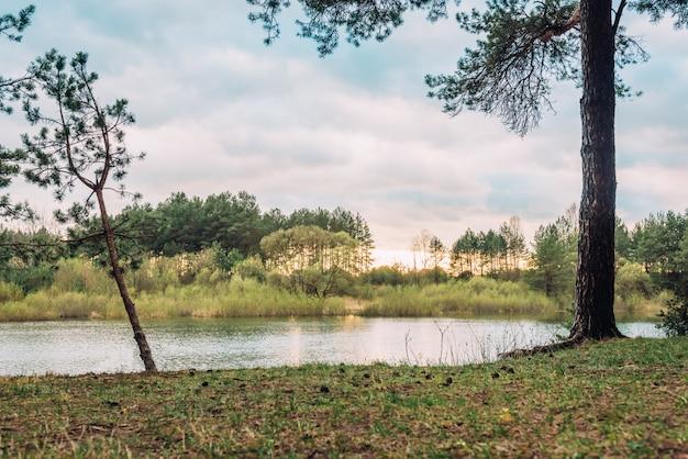 Spring landscape of sunset on river in belarus forest.