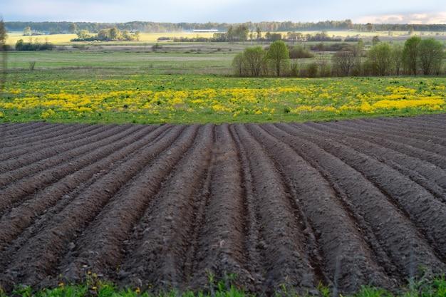 고랑이 있는 갓 파낸 농경지가 있는 봄 풍경