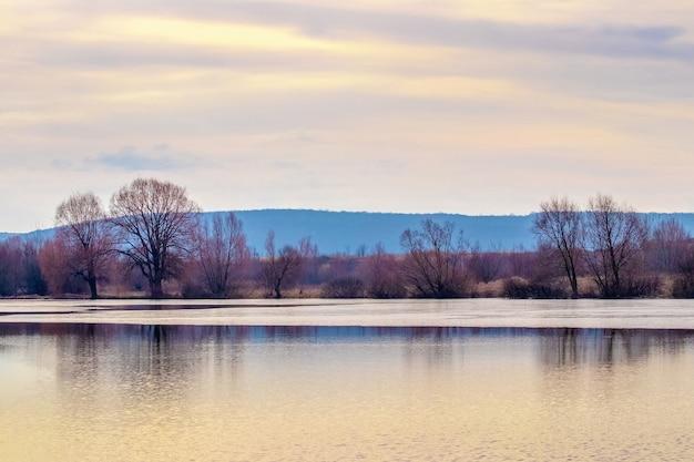 日没時に川沿いの木々と春の風景