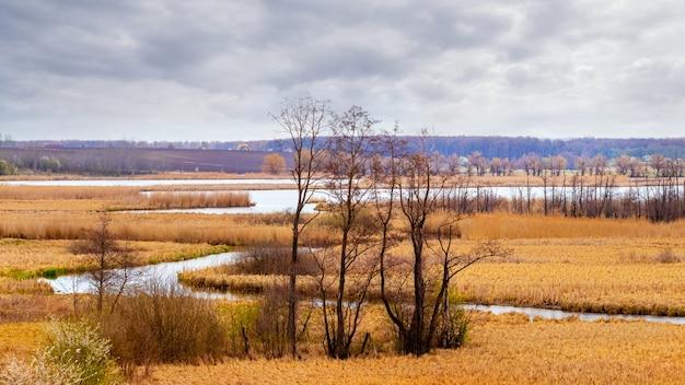 曲がりくねった川と曇り空に木々と春の風景