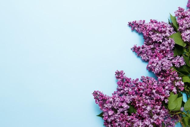 青色の背景に春のライラック色の花