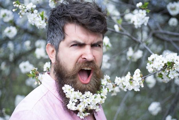 桜の春の男。あごひげを生やした残忍な男を叫び、見て