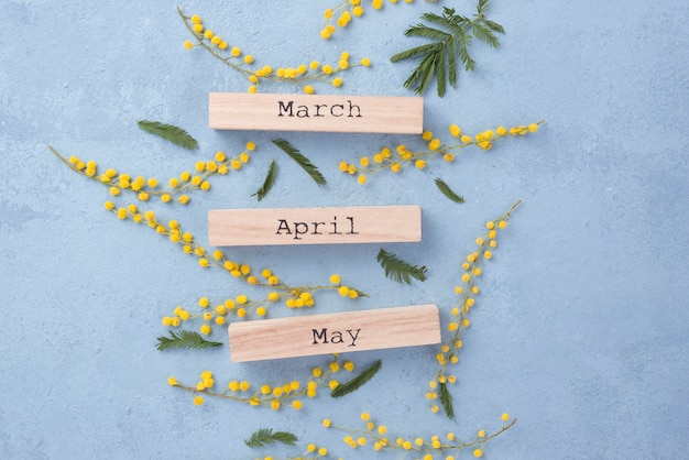 Spring months and flowers branches