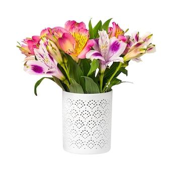 白で隔離の白い鉢に春の色とりどりの花