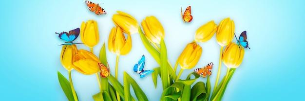 美しいチューリップと蝶と春の自然の背景