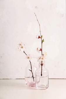 Spring neutral light minimalistic with white flowers on the branches
