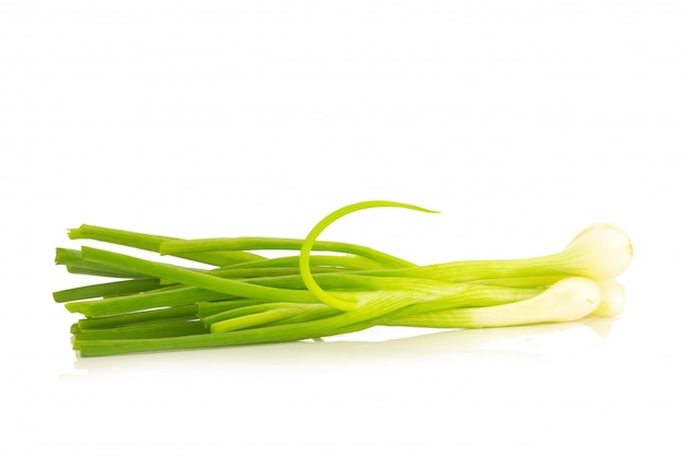 Spring onion isolated on the white background
