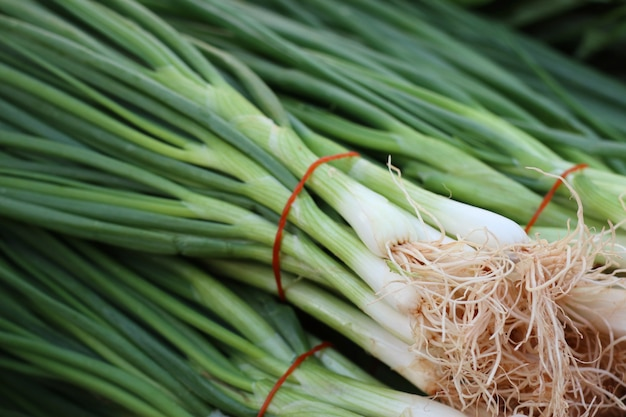 Spring onions at market