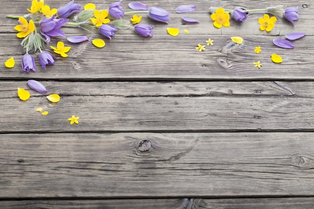 Весенние фиолетовые и желтые цветы на фоне старых деревянных