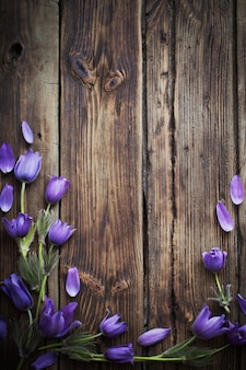 Spring purple flowers on old wooden background