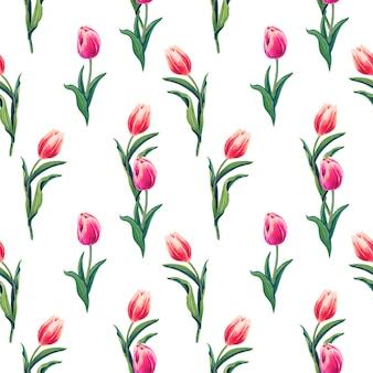 春の赤、ピンクのチューリップ。白い背景に花と水彩のシームレスなパターン。
