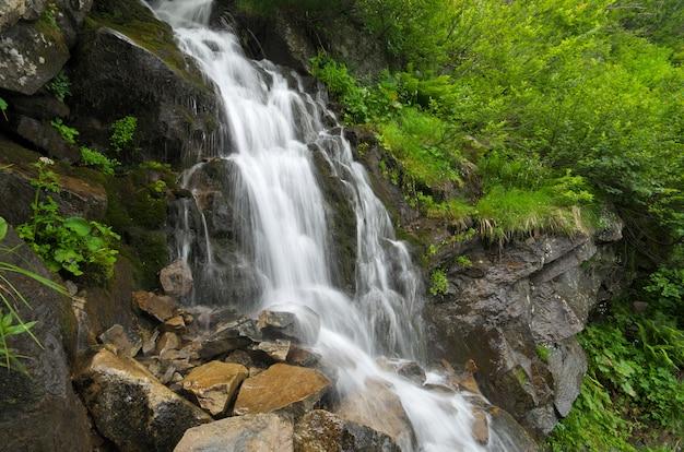 山の春のリルの流れ。