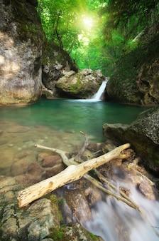 Пружинный поток ручья. состав природы.