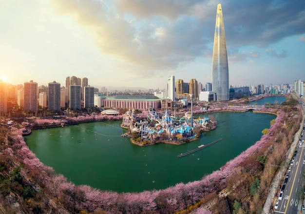 Spring season in seoul city with cherry blossom full blooming in the park