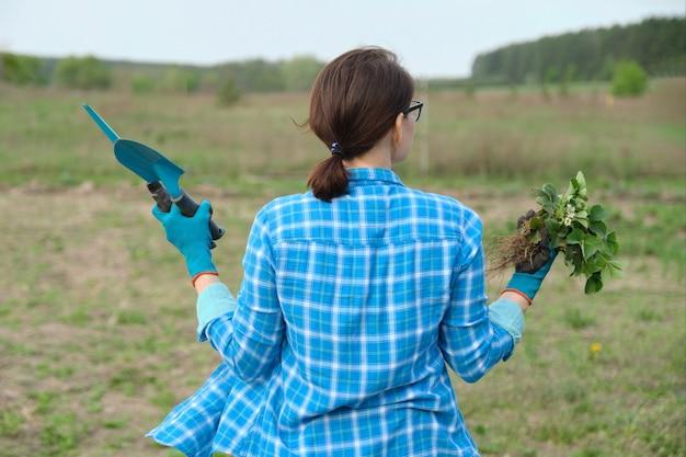 봄 시즌, 심기 및 정원 도구를위한 딸기 덤불이있는 정원에서 산책하는 여성