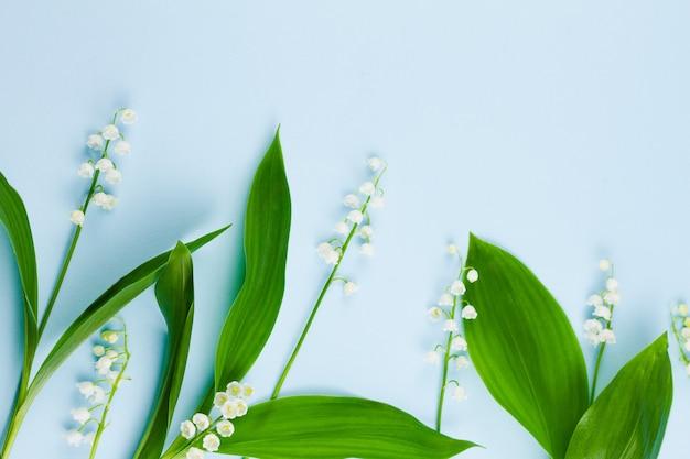 녹색 잎 계곡의 작은 연약한 숲 흰 백합을 봄