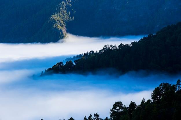 스페인 카나리아 제도 라 팔마 섬 칼데라 데 타부리엔테 자연 공원의 봄 일몰