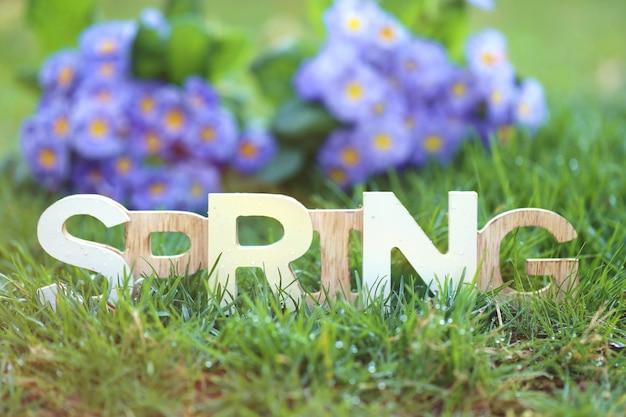 이슬이 푸른 잔디로 만든 봄 시간 봄 비는 햇빛에 흐린 식물 벽에 떨어진다
