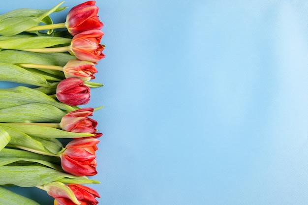 Spring Tulip Flowers Bouquet On Blue Background Premium Photo
