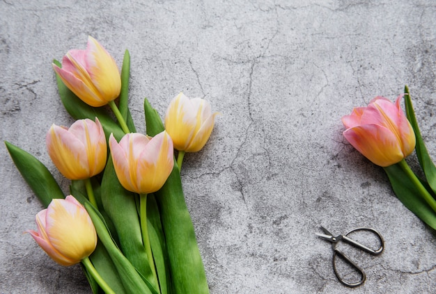 Spring tulips on a concrete surface, mother's day gift concept