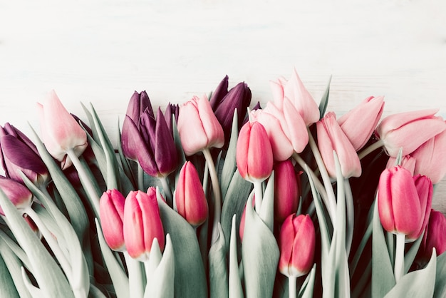 Spring tulips lying on white wooden table background