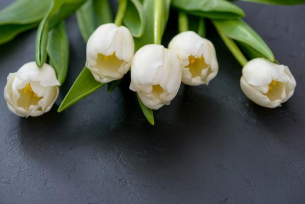 黒い背景に春のチューリップ