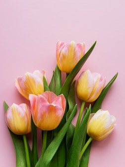 Spring tulips on a pink surface,  mother's day gift concept