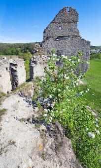 城跡の春の眺め(sydoriv村、テルノーピリ地域、ウクライナ)。