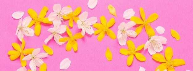 Весенние белые и желтые цветы на розовом бумажном фоне