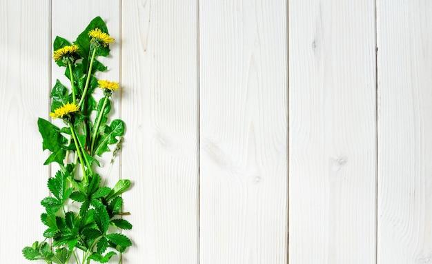 나무 흰색 표면에 봄 야생화