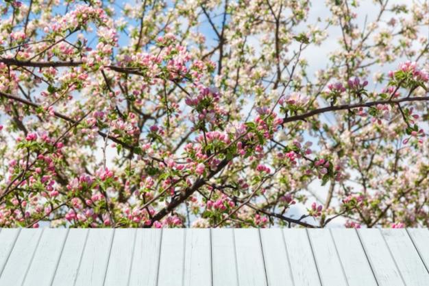 製品展示のための開花リンゴの木と白い木の板で春