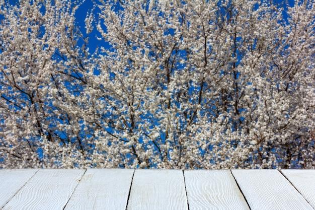 製品展示用の開花木と白い木の板のある春