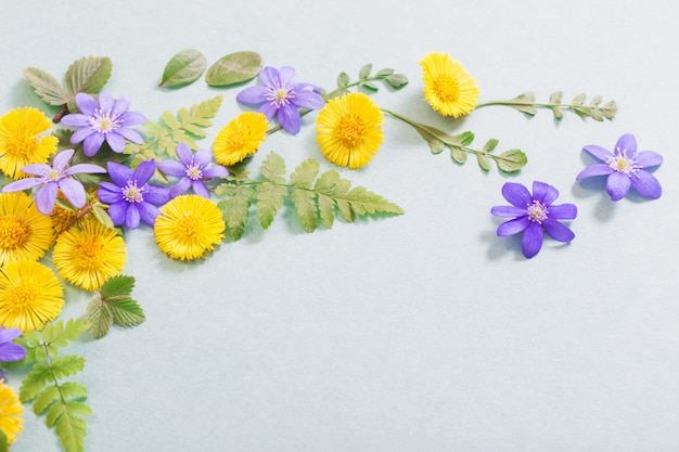 Весенние желтые и фиолетовые цветы на фоне бумаги