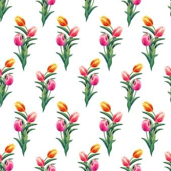 春黄色、赤、ピンクのチューリップ。白い背景に花と水彩のシームレスなパターン。
