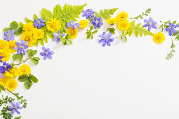 Spring yellow and violet flowers on paper background