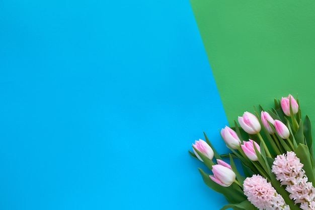Springtime blue and green paper background with pink tulips and hyacinth flowers, copy-space